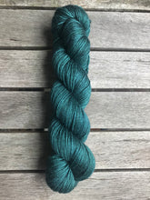 Load image into Gallery viewer, 8ply Silk/Merino 'Wild Woods'