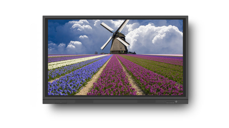 "G-Touch 4K Plus Range 65"" Education and Corporate"