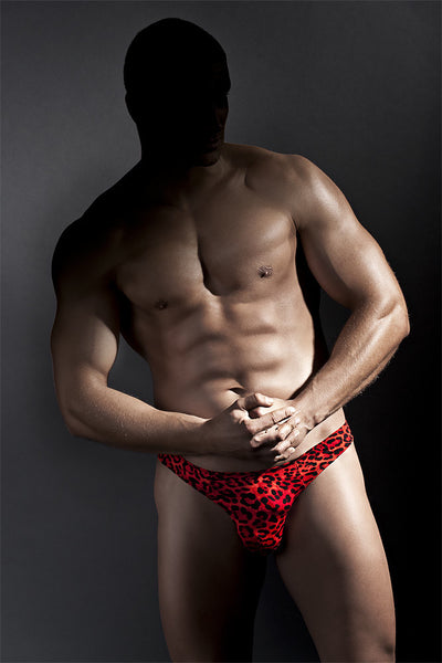 Mens Underwear - Jason