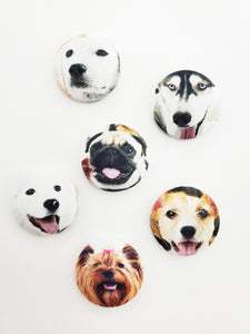 Dogs Galore Magnet Sets