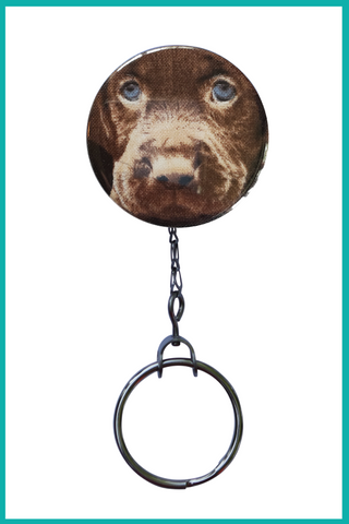 Chocolate Labrador Office ID Badge Reel