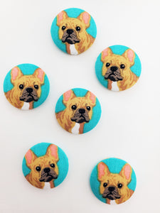 Turquoise French Bulldog Magnets