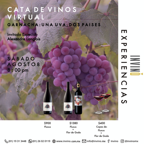 Cata Virtual: Uva Garnacha