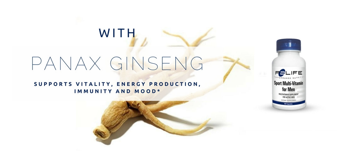 hat is Panax Ginseng?