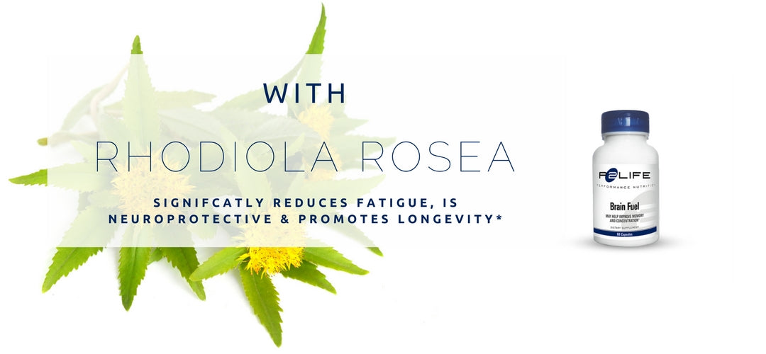 What is Nootrpoic Rhodiola Rosea and Brain Supplement