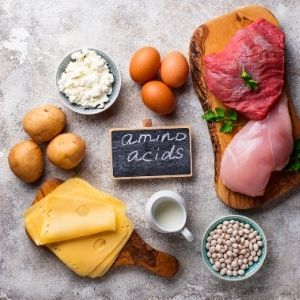 Cheese, potatoes, eggs, meat, milk and beans arranged around a small chalk board with amino acids written on it