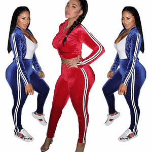 2018-2019 Sexy Workout Velvet Tracksuit Women Sweat Suits