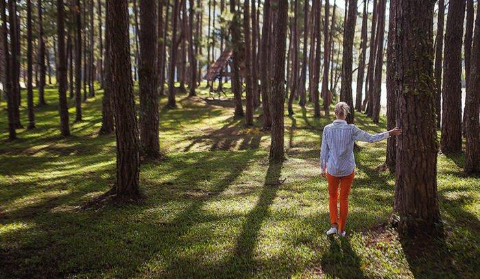 Five simple steps to forest bathing | Breathable Naturals | Glam & Fame Clothing