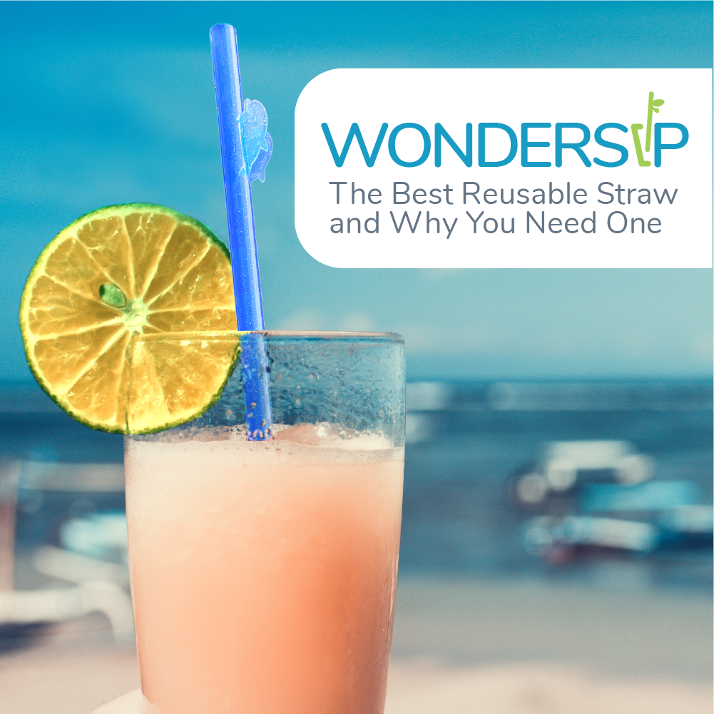 WonderSip: The Best Reusable Straw And Why You Need One