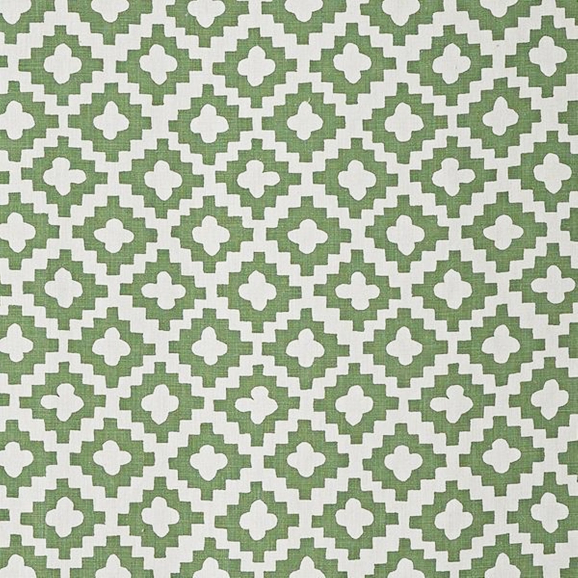 Peter Dunham Peterazzi in Green Outdoor Designer Fabric