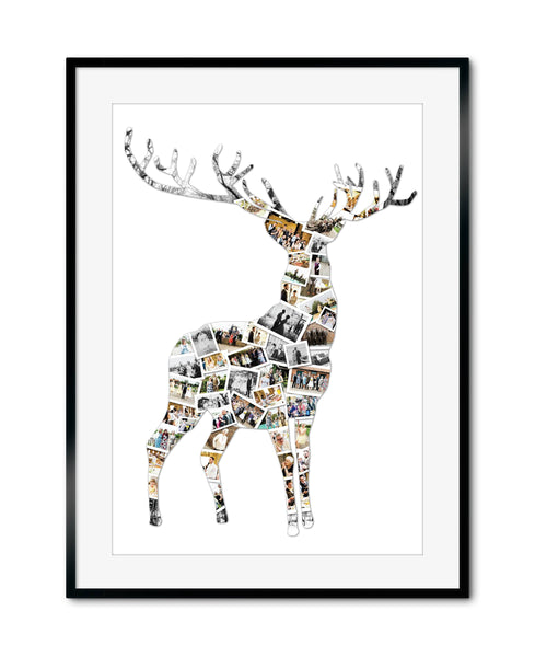 Reindeer Stag Collage