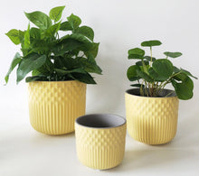 Load image into Gallery viewer, UG023223-Tuscan Planter Yellow Med 13cm