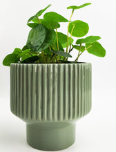 Load image into Gallery viewer, UH083316-Nova Planter Green 14cm [4]
