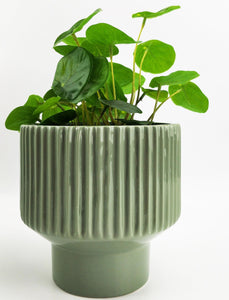 UH083316-Nova Planter Green 14cm [4]