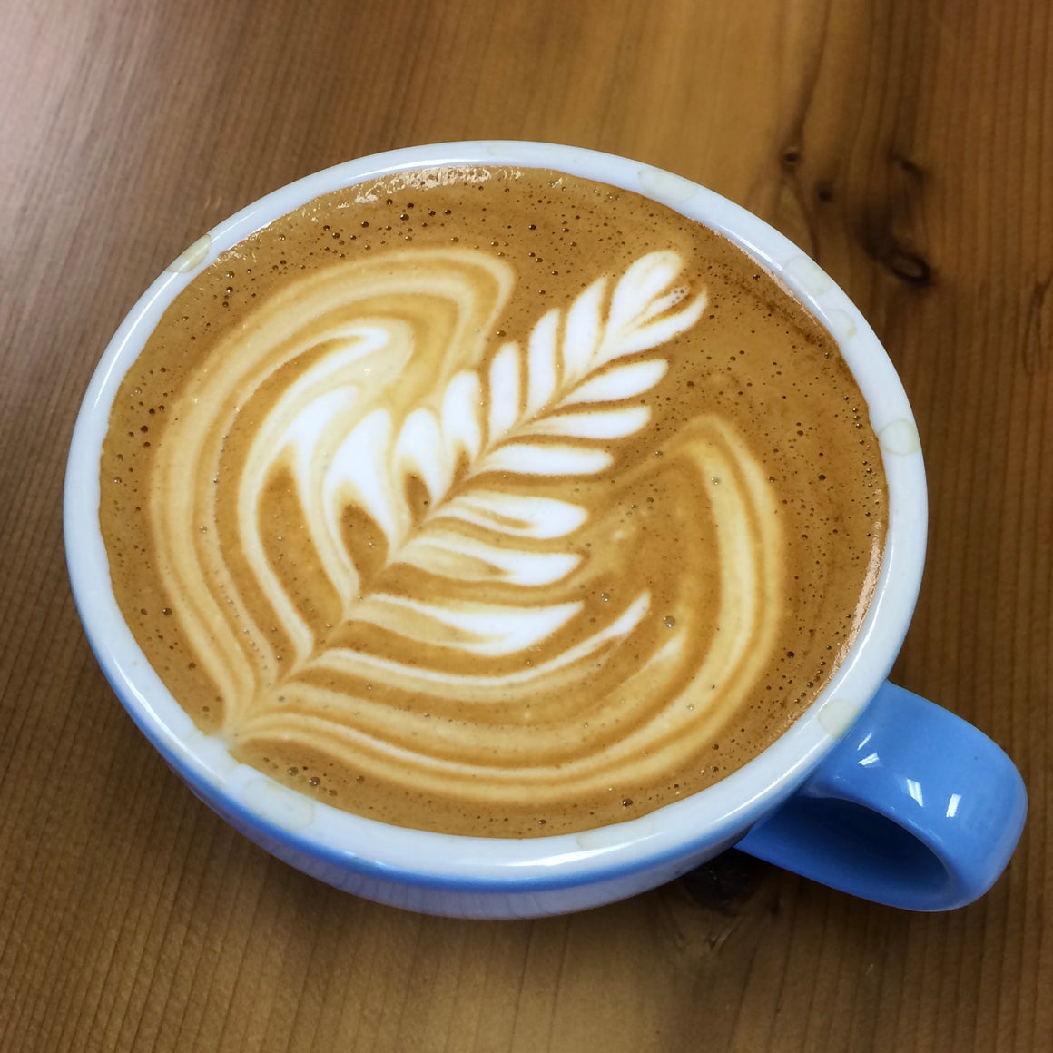 Latte Art Basics - Monday March 9th