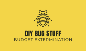 DIY BUG STUFF Products to Prevent & Monitor