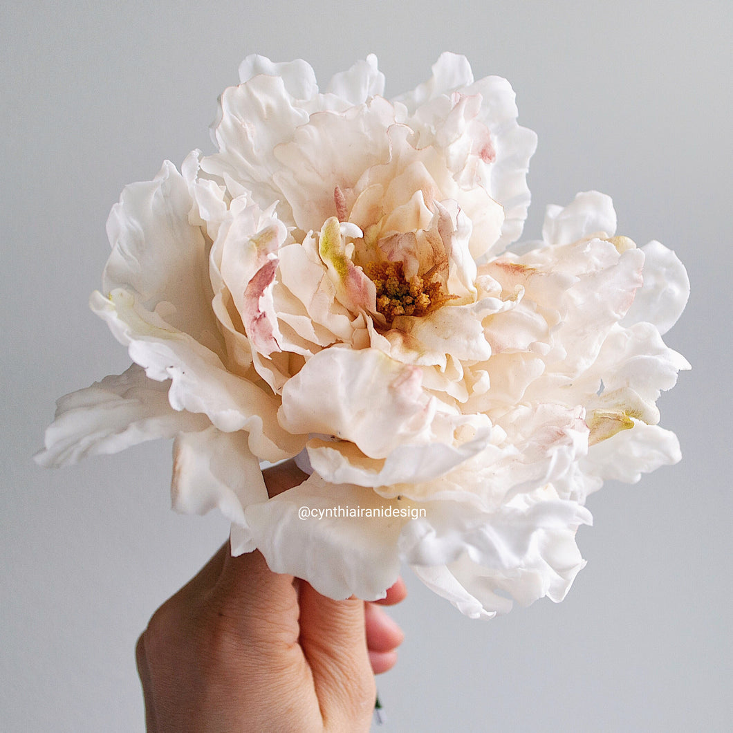 Sugar Flower Peony (Paeonia 'Krinkled White') - Cake Topper