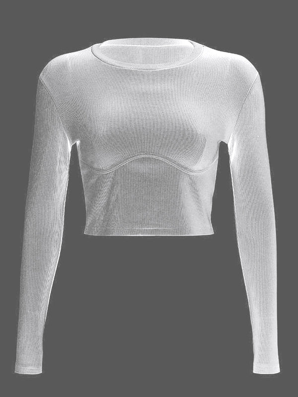 Slim Fit Crop Top Tee