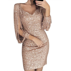 Sequin Sparkly Dress
