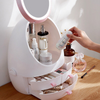 LED Makeup Storage Mirror