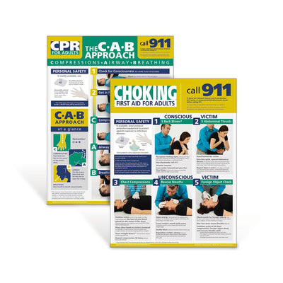 Adult CPR and Choking Poster Set