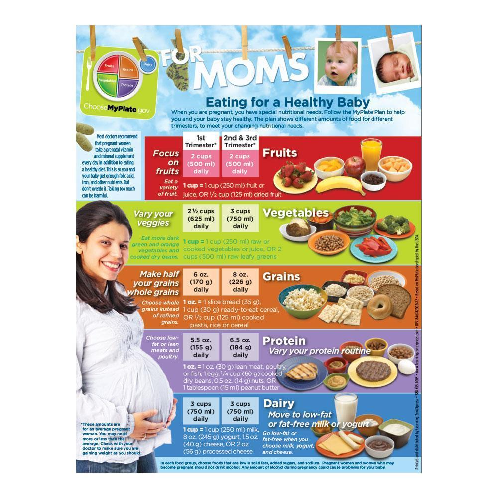 MyPlate Expecting Moms Handout for Pregnancy Front