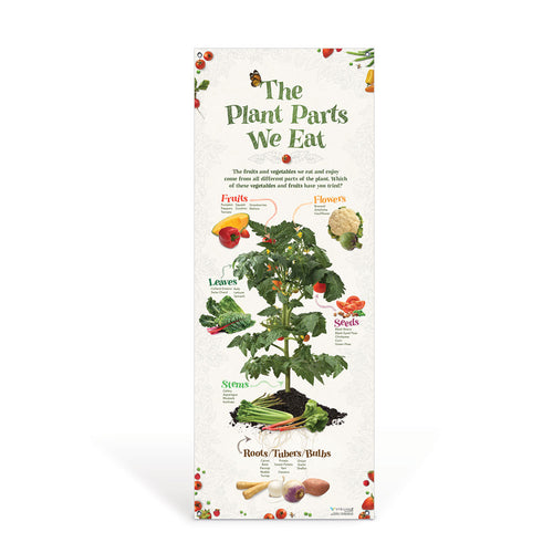 The Plant Parts We Eat Vinyl Banner
