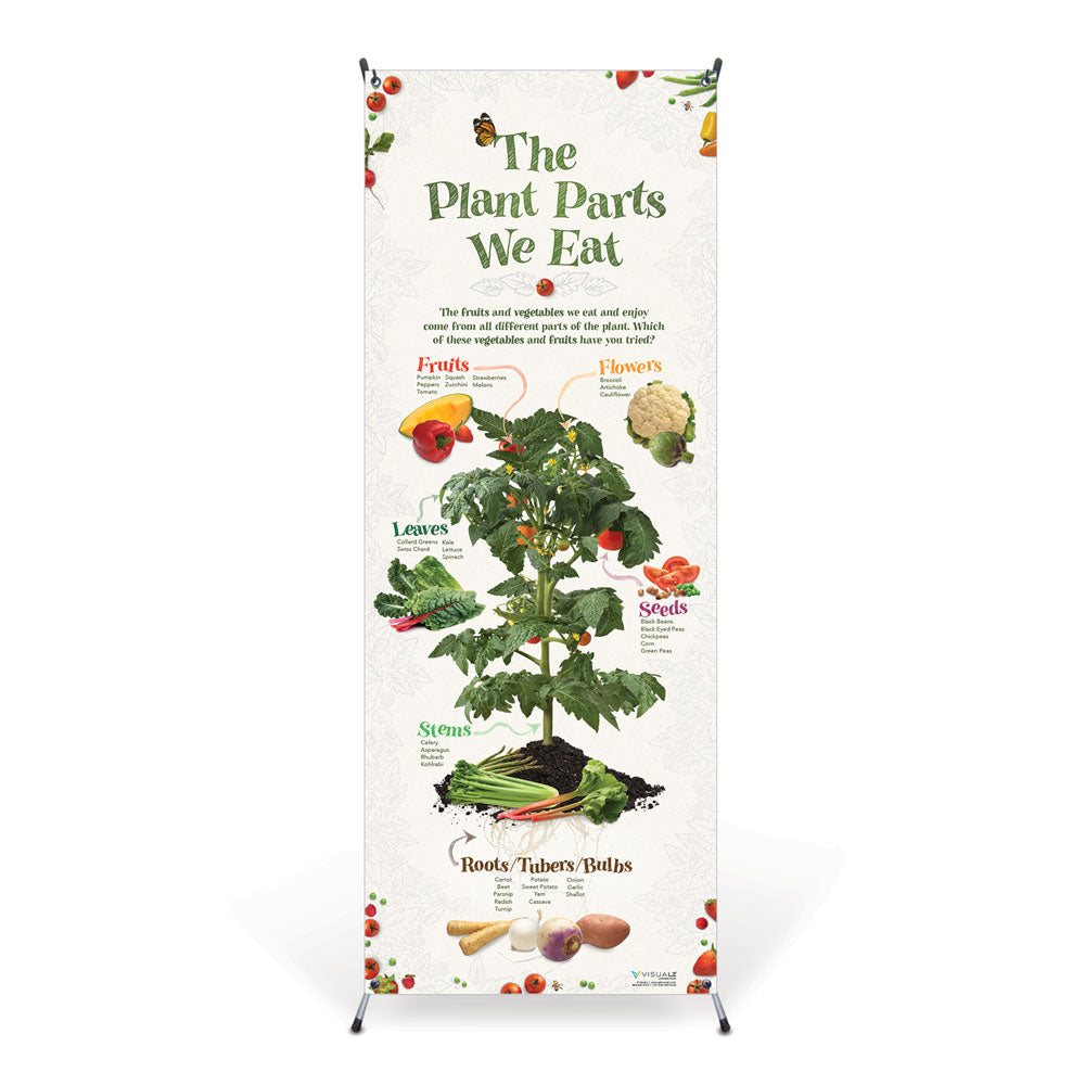 The Plant Parts We Eat Vinyl Banner with Stand