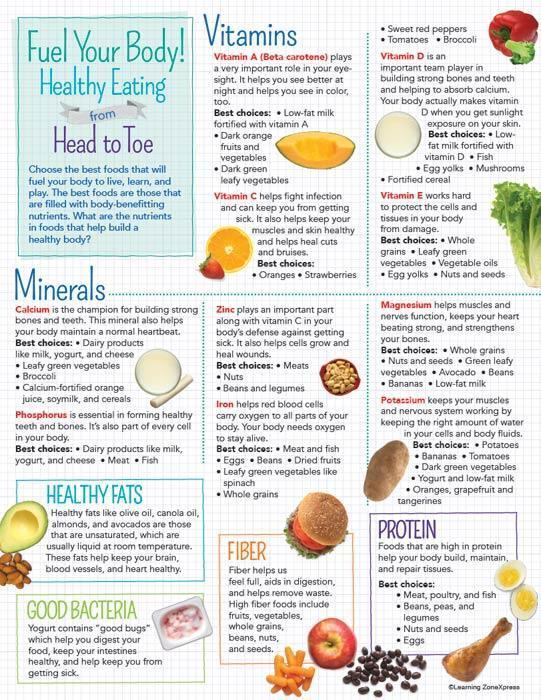 Kids Healthy Eating From Head To Toe Handouts Visualz