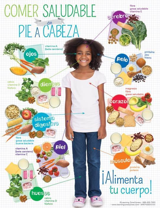 Kids Healthy Eating from Head to Toe Spanish Handouts