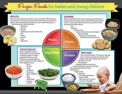 Foods for babies brochure