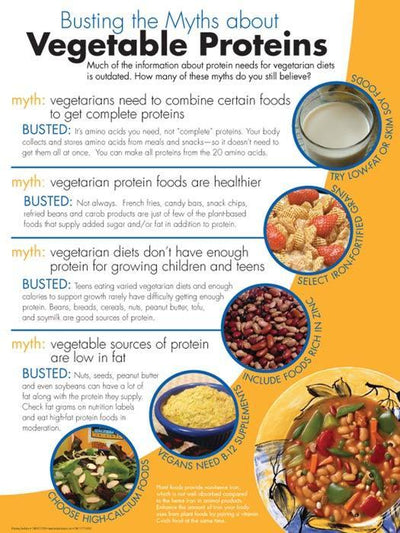 Myth Busters: Protein and Vegetable Protein Handouts