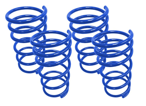 Steeda Focus RS mk3 Performance Lowering Springs