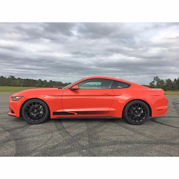 Steeda S550 Mustang Lowering Springs -  Competition Dual Rate Springs