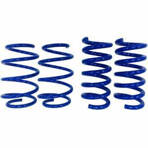 Steeda S550 Mustang Lowering Springs - DRAG RACE - Linear GT