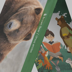 Montessori Animal Footprint Learning Cards