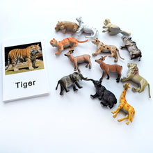 Load image into Gallery viewer, Montessori  24 piece baby Learning Animals set