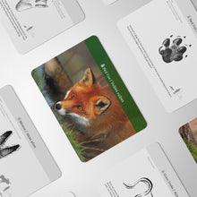 Load image into Gallery viewer, Montessori Animal Footprint Learning Cards
