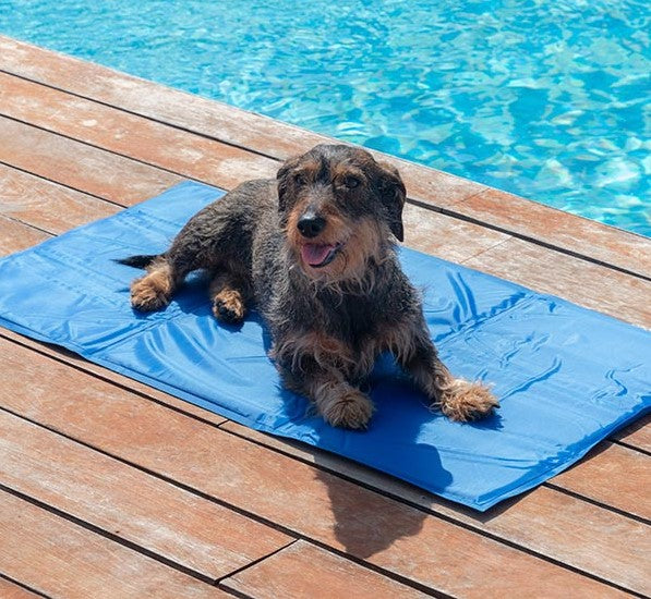 Refreshing Pet Mat