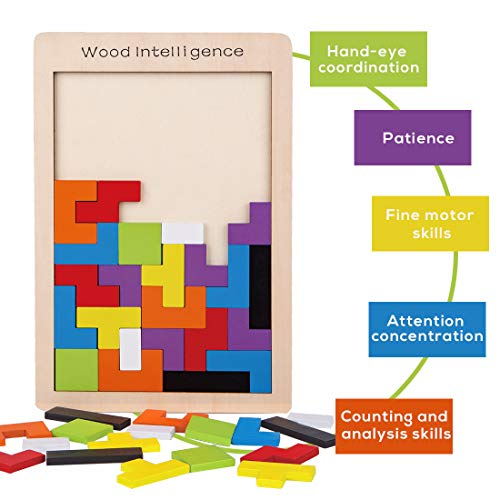 Wooden Puzzle Brain Teasers Game