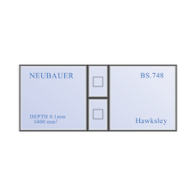 Load image into Gallery viewer, Neubauer Haemocytometer Hemocytometer Counting Chamber Set | Hawksley |