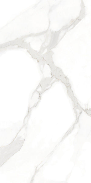 Porcelain Tile | Elegant Series | 300x600mm | SP6PT81T-B374 - Global Builders Warehouse
