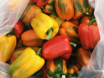 Organic Sweet Bell Peppers - LOCAL - 1 LB