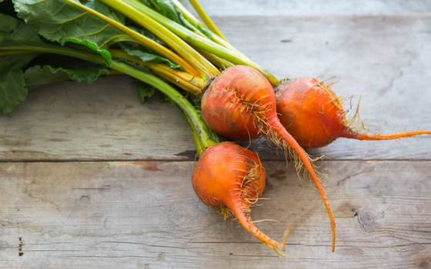 Organic Beets Bundle - Gold - LOCAL