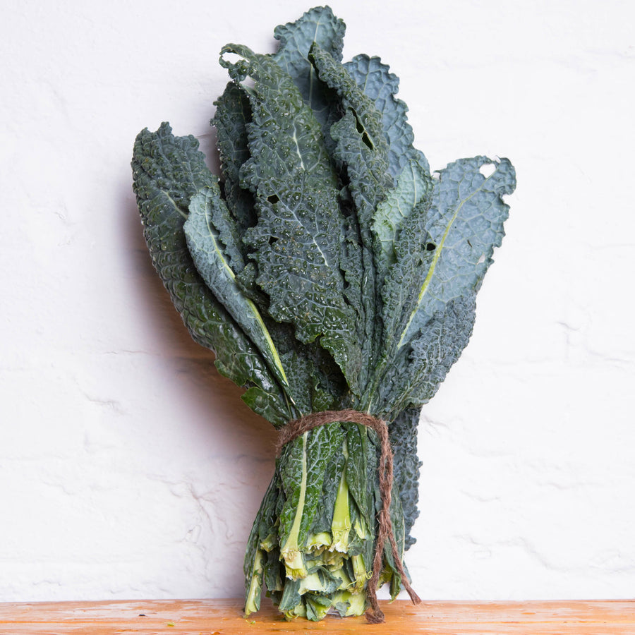 Organic Kale -Tuscan - LOCAL