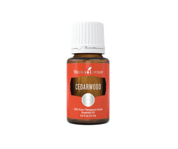 Cedarwood Essential Oil - 15ml - Young Living
