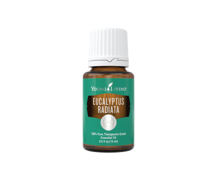 Eucalyptus Radiata Essential Oil - 15ml - Young Living