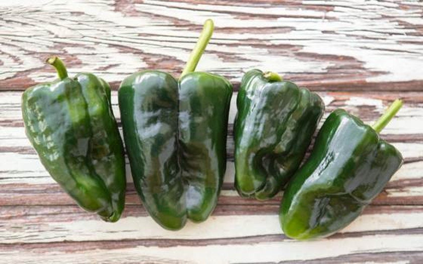 Organic Poblano Peppers - LOCAL - 1/2 Pound