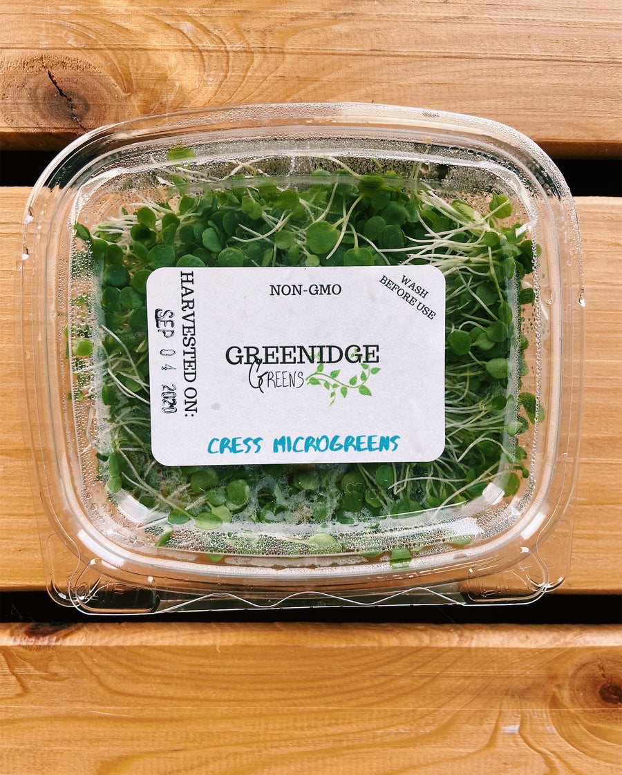 Organic Cress Microgreens - Small Clamshell - LOCAL