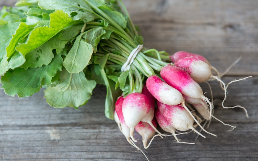 Organic French Breakfast Radishes - LOCAL